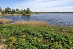 Берег озера №1
